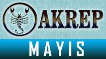 AKREP Burcu, MAYIS Ayı Astroloji ve Burç Yorumu, MAYIS 2014