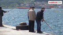 Rus Savaş Gemisi Akdeniz'e İniyor