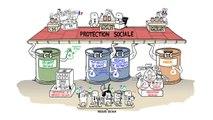 Dessine-moi l'éco - la protection sociale