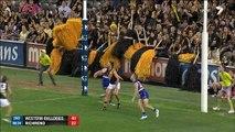 AFL 2014 Round 3 - Western Bulldogs v Richmond x264 (2nd quarter)