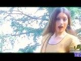Pa Meena Akhpl Ba De Karam.....Pashto Songs And Sexy Hot Dance Album Janeman Janana....Dancer Kiran Khan.....Singer Nazia iqbal