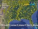 Bulk Grains Market US Grains Market, US Grains Prices, US Grains Report, Wholesale Grains