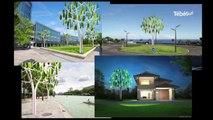 Côtes-d'Armor. Eolien du futur : un arbre qui a le vent en poupe