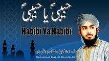 Muhammad Shakeel Attari Qadri - Habibi Ya Habibi - Official Video