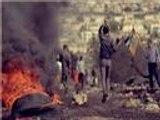 """مقتطفات من """"فلسطين تحت المجهر"""".. مناطق ج"""