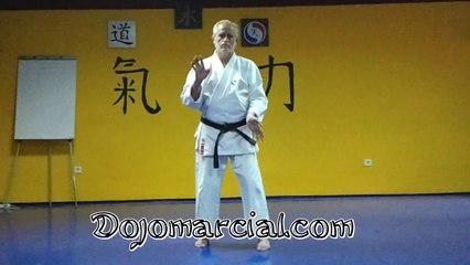 Kata Sanchin - Sanchin Kata - Maestro Andres Congregado 8vo Dan Karatedo