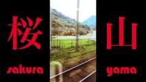 Sakura Yama (桜 山) Coup de Coeur Rendez-vous du Carnet de voyage
