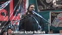 Zakir Zergham Abbas Shah - 18th January 2014 - Chelum Allama Nasir Abbas Multan Shaheed - Gamay Shah Lahore