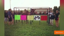 Seniors' Hump Day Prank with Camel Goes Viral
