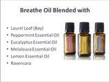 Get Breathe Essential Oil at doTERRA