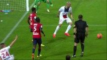 But Jonathan DELAPLACE (90ème) - LOSC Lille - Paris Saint-Germain - (1-3) - 10/05/14 - (LOSC-PSG)