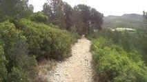 Cuges les pins GR98 50 km 14