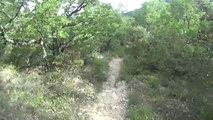 Cuges les pins GR98 50 km 02