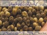 Aik Banday Ka Rizq Shararti Bachay Ki Naak Main - Shaykh Zulfiqar Ahmed