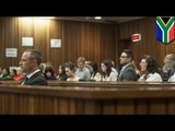 Oscar Pistorius trial: Witness describes 'screaming' after Steenkamp shooting
