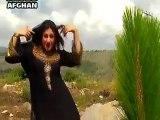 Ghalye Gownte Rasha Khwala Ghalye.....Pashto songs New Dance Album Afghan Hits Vol 01 - 2014....Hot Sexy Dance