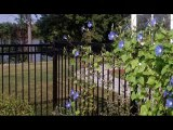 wrought iron fencing, iron fencing, Carmichael