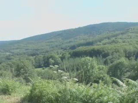 Espace VTT du Massif des Bois Noirs