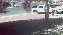 Cat SAVES Boy From Dog Attack. Hero Cat Saves Young Boy from Attacking Dog Bakersfield California