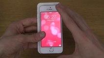 NEW Apple iPhone 6 3D Prototype vs. Apple iPhone 5S