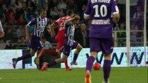 Toulouse FC - Valenciennes FC (3-1) - Résumé - 17/05/14 - (TFC-VAFC)