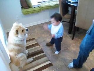 Beba i Pas Imaju Najslađu Raspravu Na Svijetu. Ovo Će Vam Rastopiti Srce.