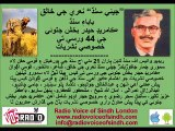 Aman Shaikh Khaliq Junejo Dr Aziz Talpur and Comrade Shabir Solangi on Comrade Hyder Bux Jatoi's 44 Anniversary Special Transmission by RVOS 21 MAY 14