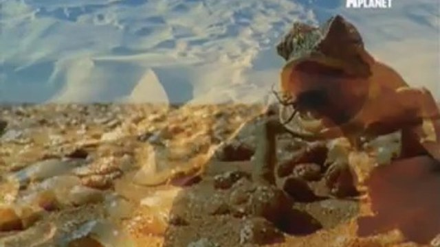 Nature's Microworlds 21st May 2014 Video Watch Online Pt2