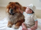 Partners in Cuteness (7 months old baby & chow dog)