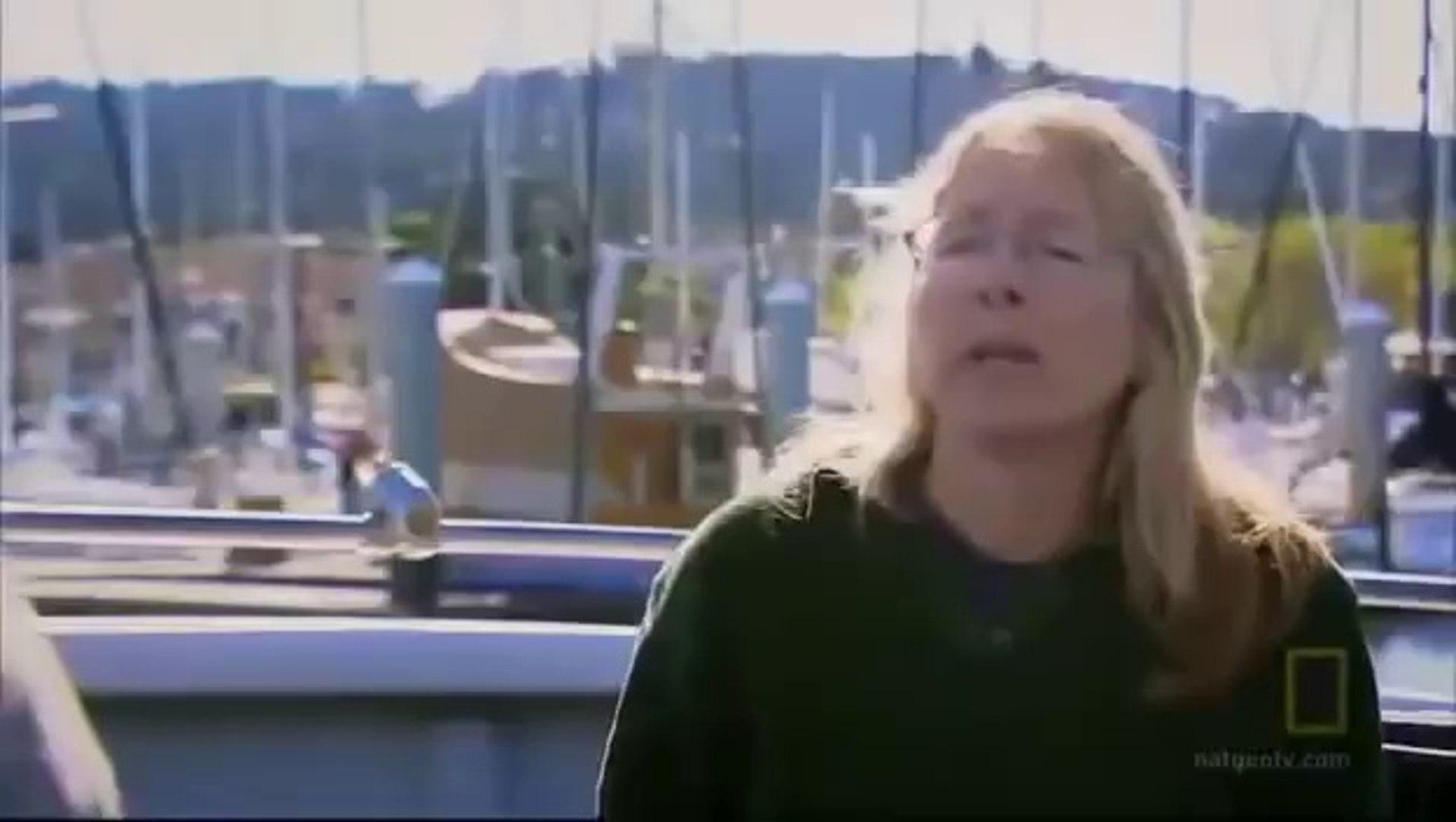 Killer Whale Vs Great White - Orca Kills Shark and Wins Fight [Full Nature Wildlife Documentary]
