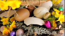 Vidéo : une composition florale pour Pâques
