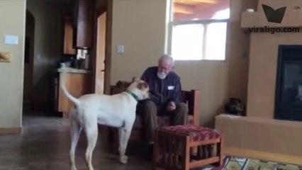 Konuşma Yetisini Kaybeden Adam Sadece Köpeğiyle Konuşabiliyor