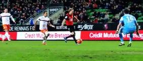 Clip : Stade Rennais 2013/2014 par Nicolas Dondel
