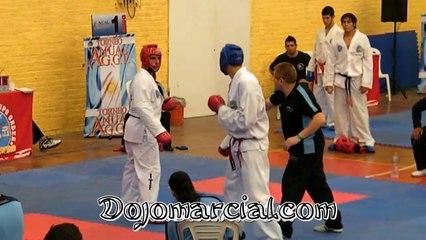 Lucha de Taekowndo - Fight Taekowndo - Luta Taekowndo - Lutte Taekowndo