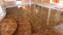 maison bioclimatique - le bassin a poissons