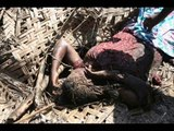 En Ilaiya Samugamea Kavithai - Tamil Eelam Yaal   Nallur B Bala - 87280 Limoges - France