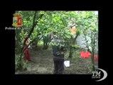 Catturata la tigre fuggita dal circo nel Napoletano. Le immagini della polizia: il felino si accuccia nella gabbia