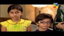 Shab-e-Zindagi Episode 18  on Hum Tv 27th May 2014