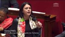 Sylvia Pinel répond à la QAG du député Laurent Furst
