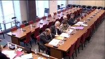 Audition de M. Jean-François Martins, adjoint au Maire de Paris - Mercredi 28 Mai 2014