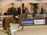 Jumping International de Nantes 1