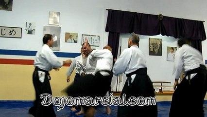 Aikido Examen Shodan (1 Dan) - 3 Part - Estilo libre - Freestlyle