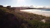 Australie-Tasmanie: Bay of Fires entre riviere et mer!