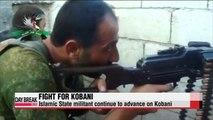 Coalition airstrikes push IS militants out of Syria's Kobani