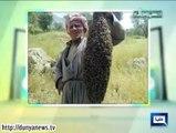 Dunya News Hasb e Haal 9th October 2014 (9 Oct 2014) Hasb-E-Haal 9-10-2014