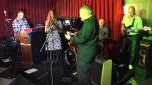 Ali Maas Band - Slipped,Tripped, Fell In Love