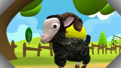 Baa Baa Black Sheep 3D Nursery rhyme for Children