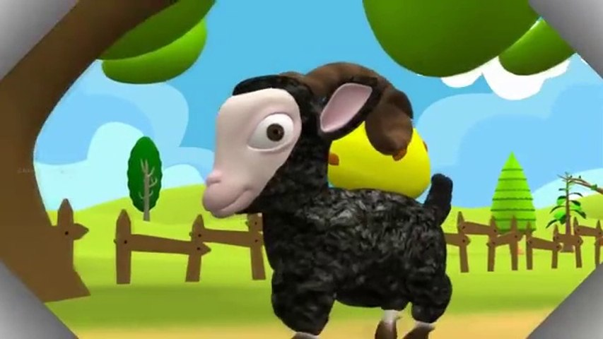 Baa Baa Black Sheep 3D Nursery rhyme for Children