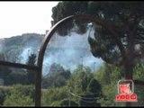 Napoli - Incendio alla pineta del Parco del Poggio, ai Colli Aminei (live 19.07.12)