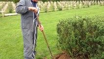 Les derniers préparatifs au cimetière polonais d'Urville